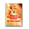 Wealth Manifestation Session Audio